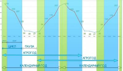 Приглашаем инвесторов от 1 млн руб в действующий тепличный бизнес с дох. 70  - Агрогод_15 мес_.jpg
