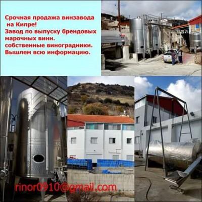 Срочная продажа действующего Winerγ винзавода . - FB_IMG_1457365052607.jpg